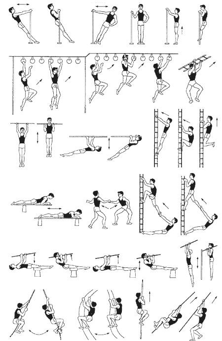 Подтягивание Специально-подготовительные упражнения.